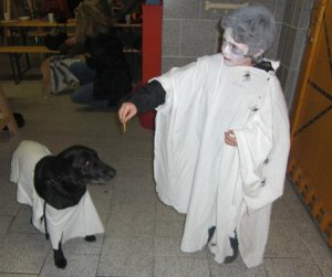 BELLOWEEN: Leon und Billy auf der Halloween Hunde Party